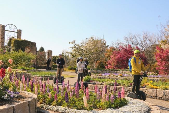 1年を通して花々を楽しむことが出来るフラワーミュージアム