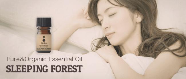 SLEEPING FOREST IMAGE