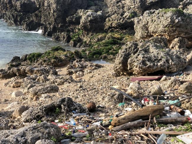 海のプラスチック量が2050年までに魚の量を重量ベースで上回ると予測されています。