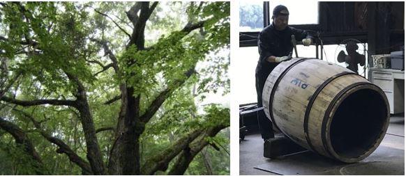 日本原産のミズナラ樽