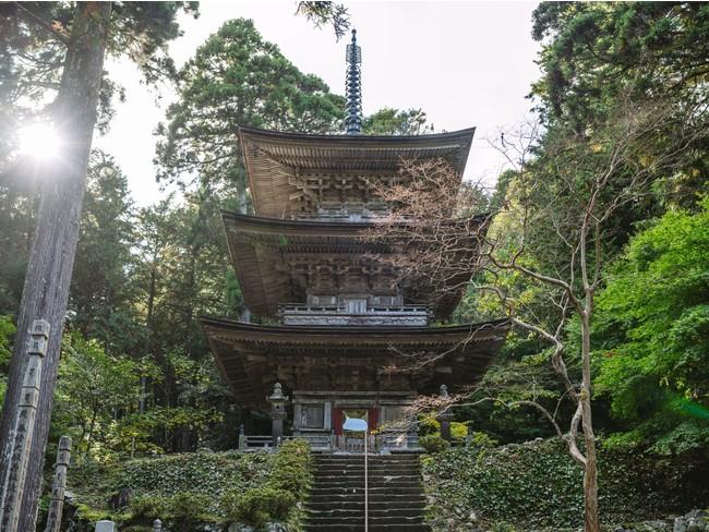 福井県唯一の国宝建造物「明通寺」