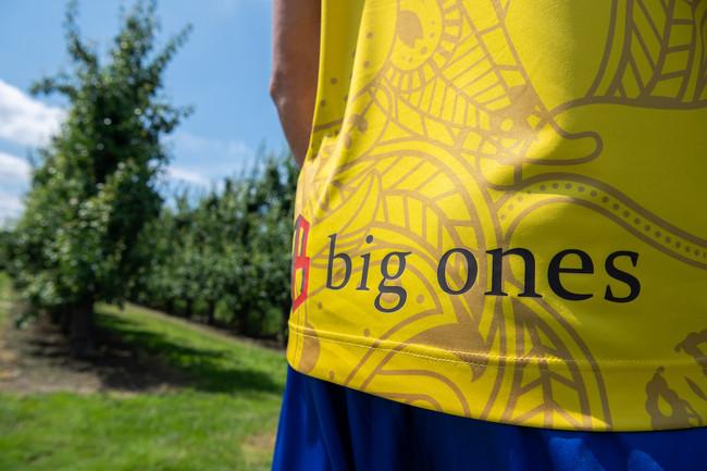 (株式会社big ones))