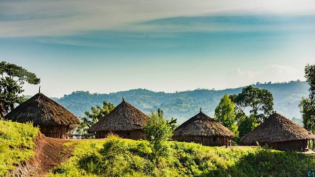 エチオピアのゲイシャ村