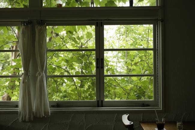 大きな窓から光が差し込む店内の様子。(撮影/三木麻奈)