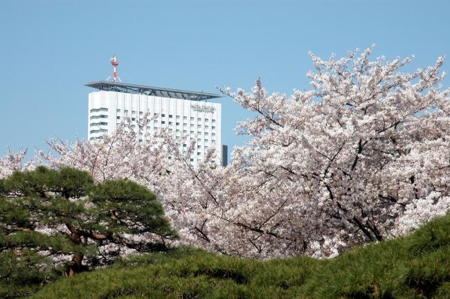新宿御苑を望む小田急ホテルセンチュリーサザンタワー