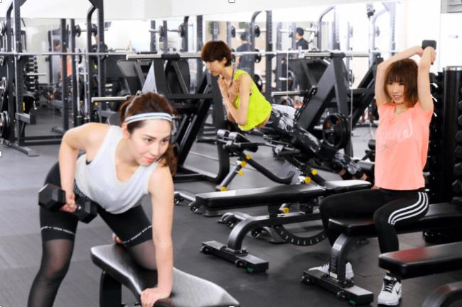 ダンベルバーベルがメインの為トレーニング種目は無限に提案可能。他体幹トレーニング用の器具も充実