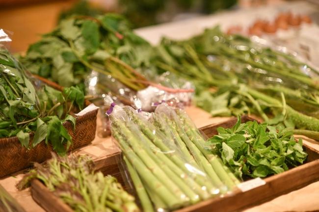 マルシェを開催~奥州市から直送の朝穫れ野菜や山菜~