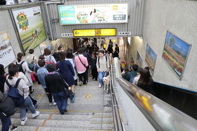 多くの人が行きかう駅もアイメイトと一緒なら安心