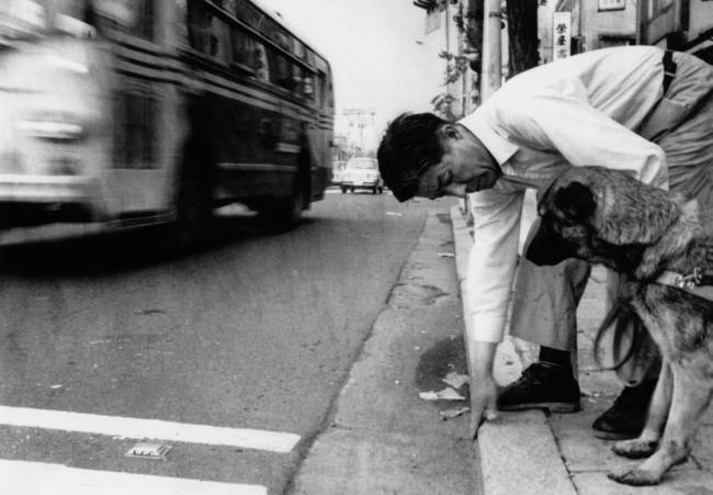 車道と歩道の段差を訓練犬に教えている塩屋賢一