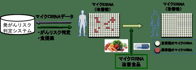 ※2 「食生活の提案によるがん予防」のイメージ