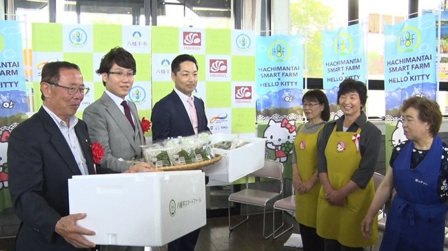 First shipment ceremony of basil grown in smart farm
