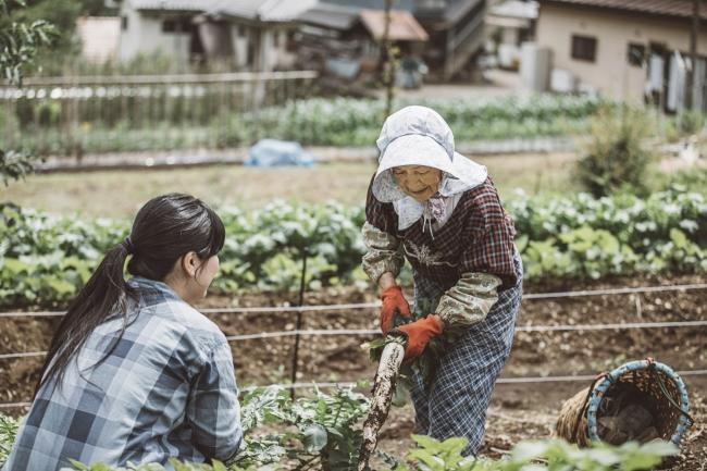 自社ファームでの農作業体験等の「オープンエアでのアクティビティ」