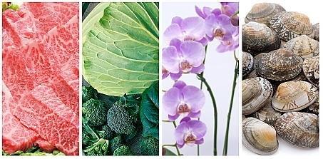 コンプリート賞の田原市特産品(イメージ) 左から、あつみ牛、キャベツ等の旬な野菜、ラン等の鉢花、渥美あさり