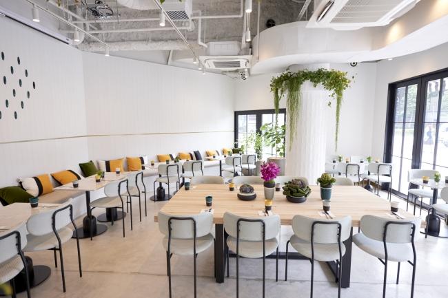 ELLE cafe 青山 1F 内装イメージ