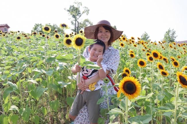 花摘み体験はお子様にも大人気
