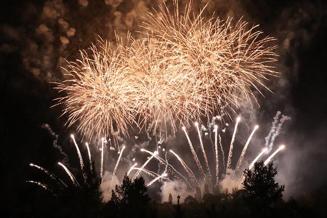 ドイツの森 花火大会2020の様子