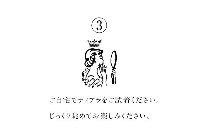 おうちでティアラ3.