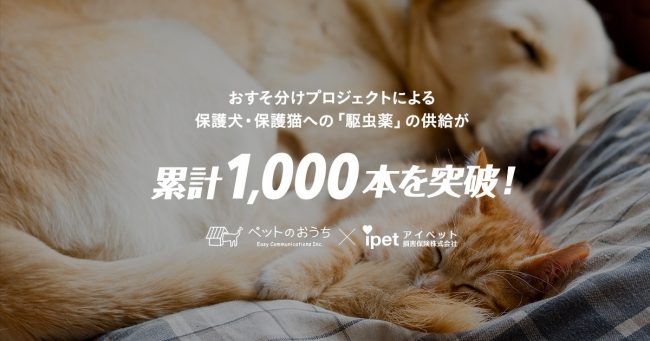 おすそ分けプロジェクト! 保護犬・保護猫たちへのノミ・マダニ駆除薬の支援が1,000本を突破!!