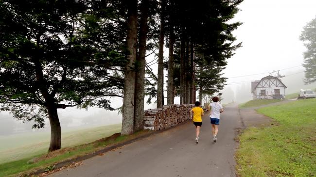 舗装された道で走りやすい「Refresh Jogging Loop」