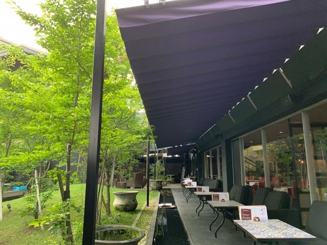 紫色のテントが新緑に映えます