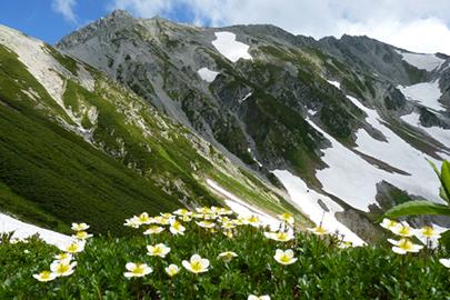 中部山岳国立公園 提供:環境省