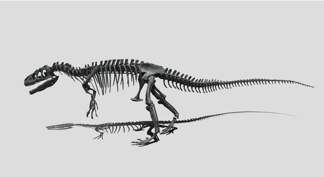 アロサウルス全身骨格化石デジタルデータ
