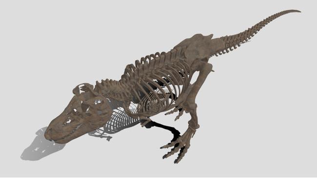 『V×Rダイナソー®』よりティラノサウルスの骨格化石デジタルデータ