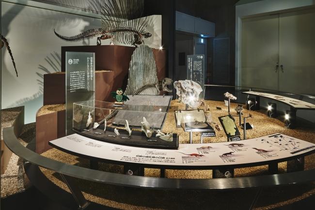 国立科学博物館 地球館地下2階展示室(3)
