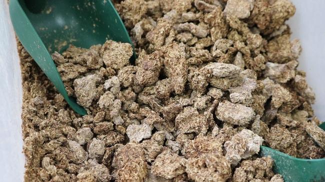 焼酎のしぼりかす。これまで、地元の酒造メーカーではゴミとして処分されていました。