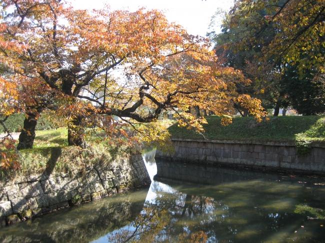 秋の龍岡五稜郭