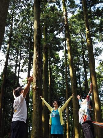 森で森林浴気功