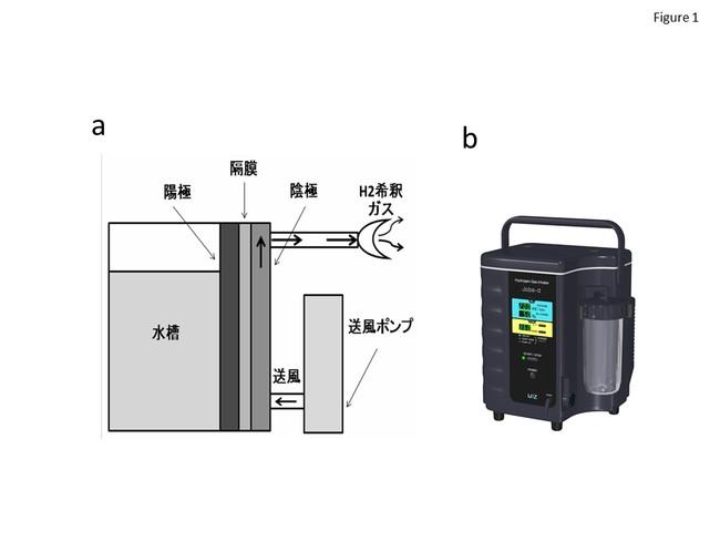 図1 水素ガス吸入装置。水の電気分解により生成された水素ガスと空気を混合して吸入ガスを調製し、爆発限界以下の濃度制御を行っている。