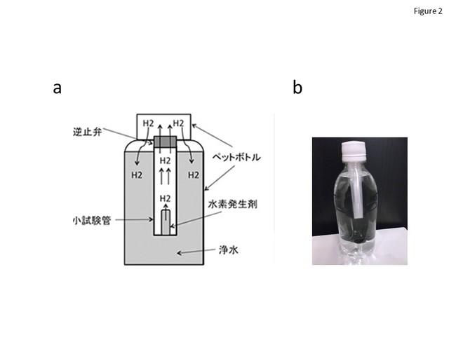 図2 超過飽和水素水の装置。水素発生剤を含む不織布を水で湿らせアクリル樹脂製のチューブに挿入し、ペットボトルにチューブを挿入した。チューブ内で発生した水素ガスは、逆止弁を介してペットボトル内に送られた。