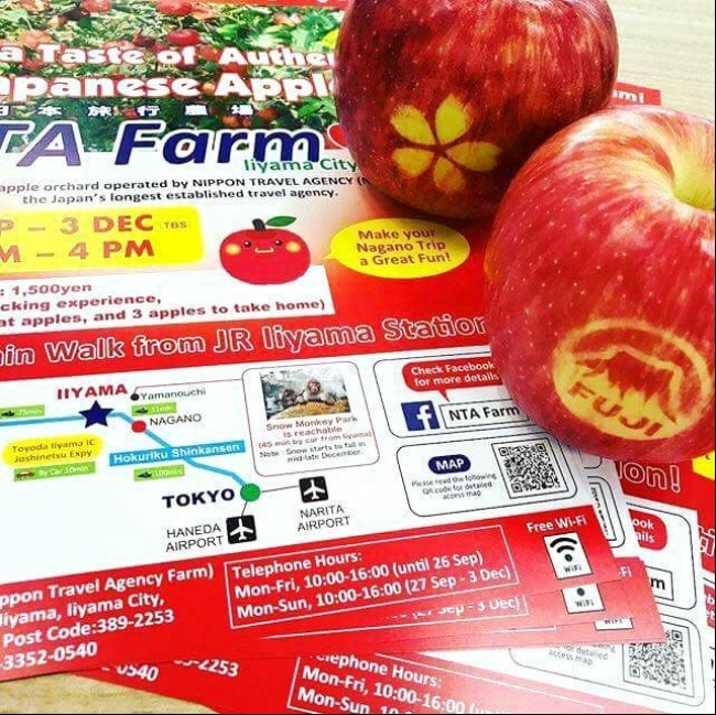 桜や富士山の絵柄のりんごも販売しています。