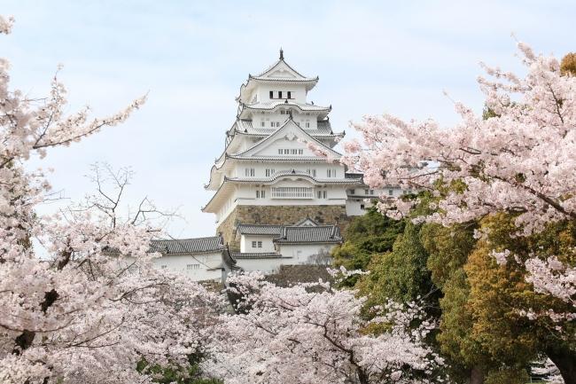 【姫路城】世界遺産になった日本建築の最高峰※写真提供:姫路市