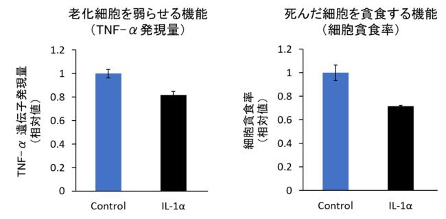 図5 悪性因子(IL1-α)によりマクロファージの機能が低下する