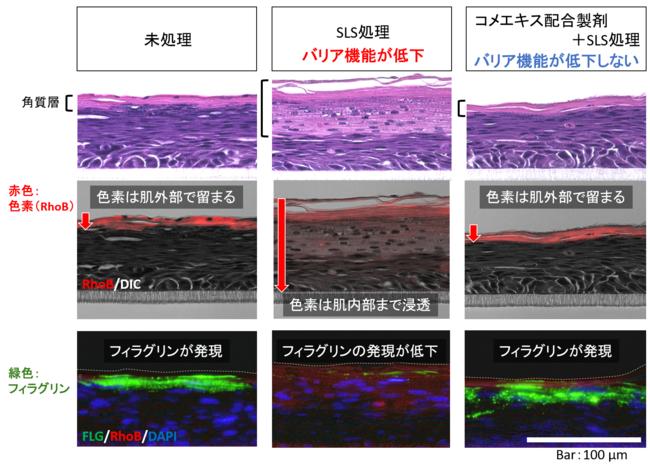 図3.人工皮膚のバリア機能低下に対するコメエキスNU の予防効果