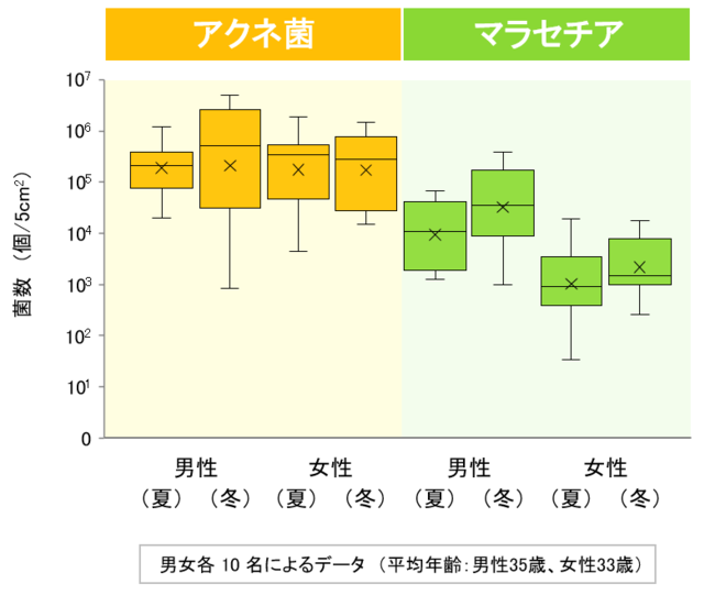 図1 アクネ菌とマラセチアの菌数