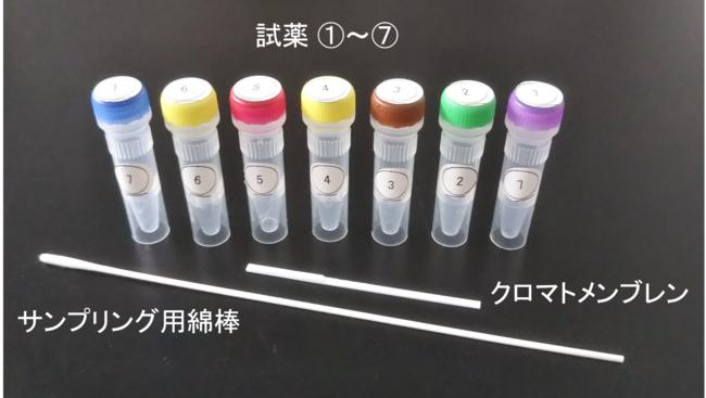 図2 皮膚常在菌検出キット内容