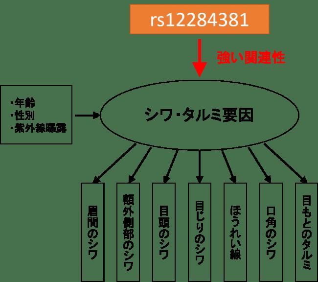 構造方程式モデリングによる関係性の推定