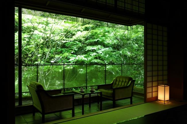 箱根の山の借景までも部屋の一部として取り込んだ