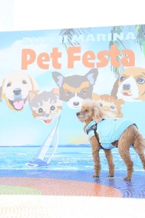 ペットと共生するイベント
