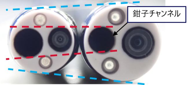 スコープ先端比較 左:BF-H1200  右:従来品(BF-H290)