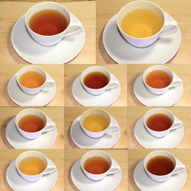 11種類の紅茶