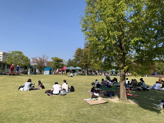 芝生の広場でピクニックをしながら紅茶を楽しむ様子