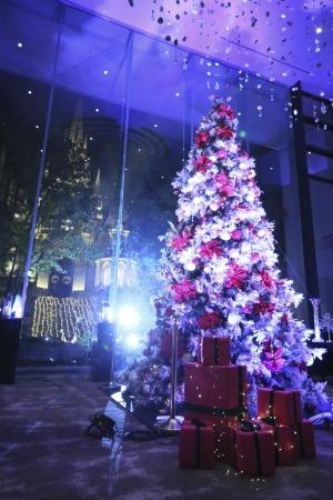 クリスマスツリーライトアップイメージ