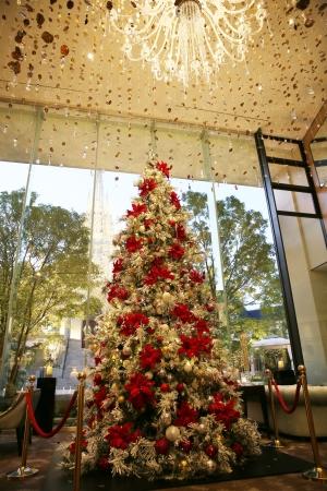 ▲迫力あるクリスマスツリーが当日限定で光に包まれる