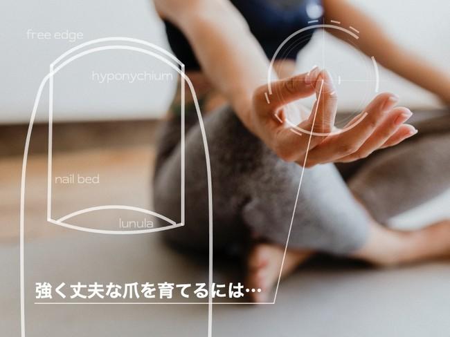 アスリートネイルを応用したAI爪診断