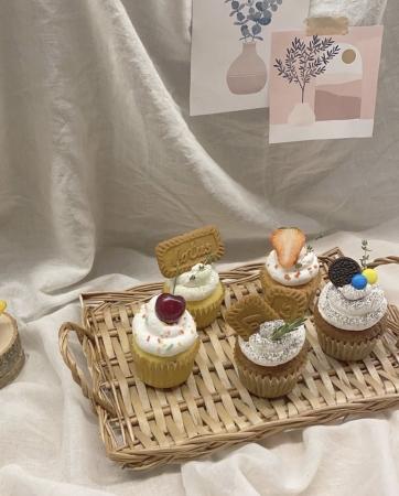 𓅯 ะ cupcake series ¥550~
