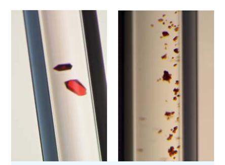 国際宇宙ステーション(左)と地球上(右)で生成したヘモグロビンのタンパク質結晶(C)JAXA